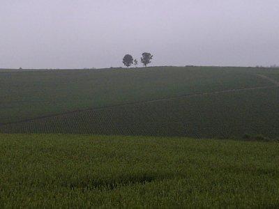 20060626